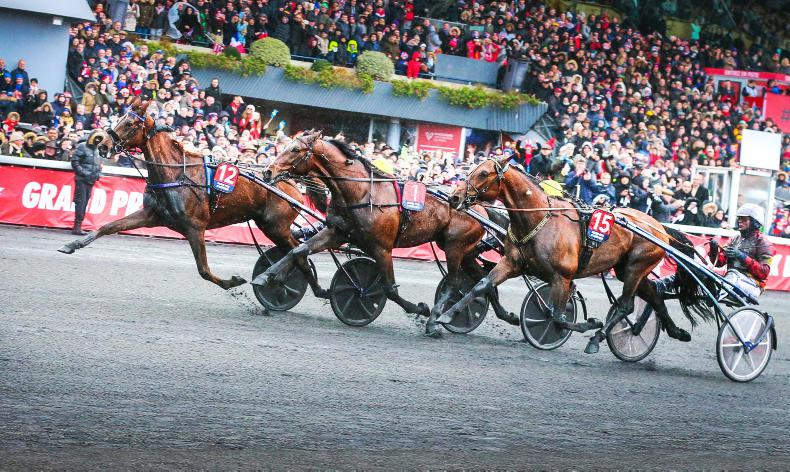 HARNESS RACING: Stars descend to the Temple of Trot