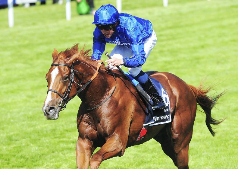 SIRE REVIEW: Masar (IRE) - Standing at Dalham Hall Stud