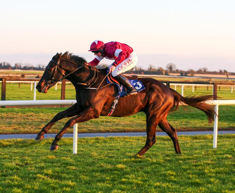 Bloodaxe is O'Brien's major weapon at Leopardstown