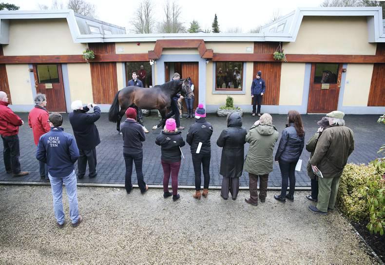 ITM STALLION TRAIL: On the winning trail in Ireland