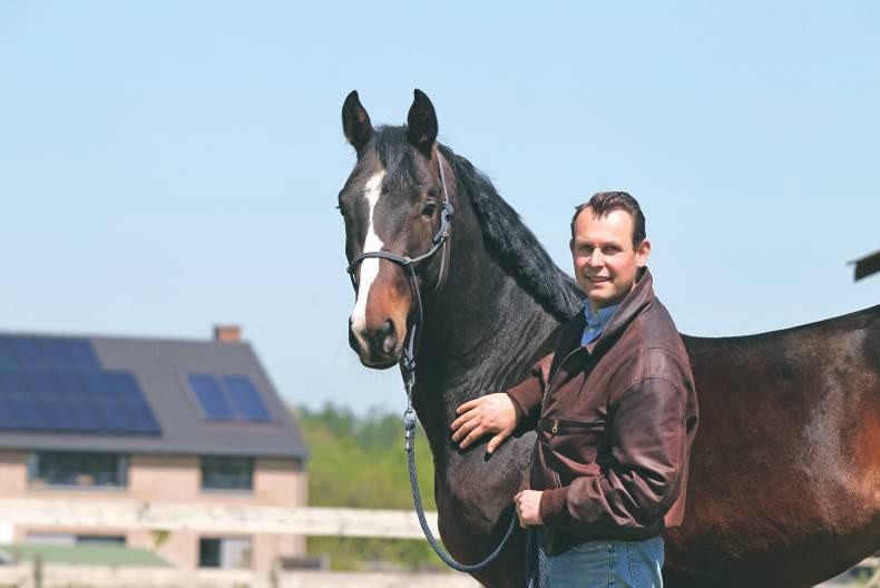 High-performing mares key to breeding the show jumpers of the future