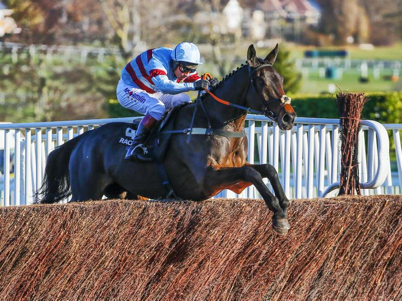 RORY DELARGY: Lalor can return to winning ways at Cheltenham