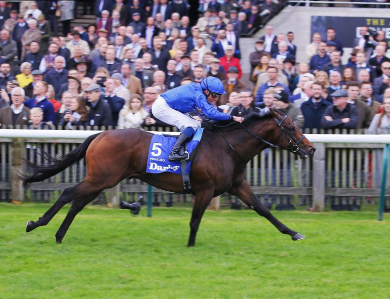 RORY DELARGY: Is Pinatubo the equal of Frankel?