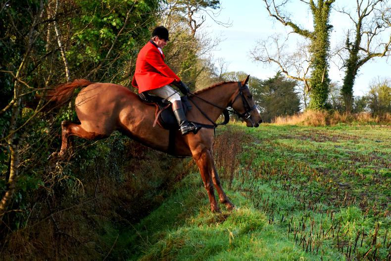 PICTURE DESK: On the hunting field