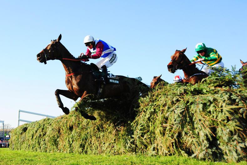 Latest news from The Irish Field