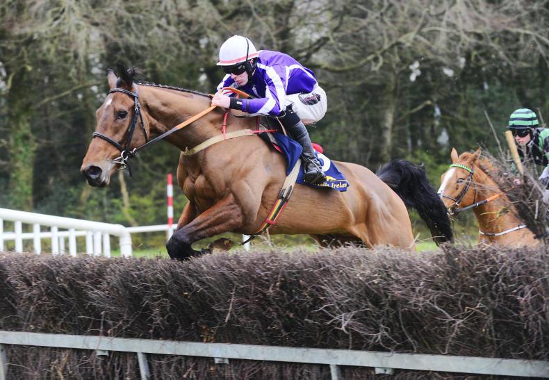 EOGHÁIN WARD: Four-year-old maiden winners now Cheltenham bound