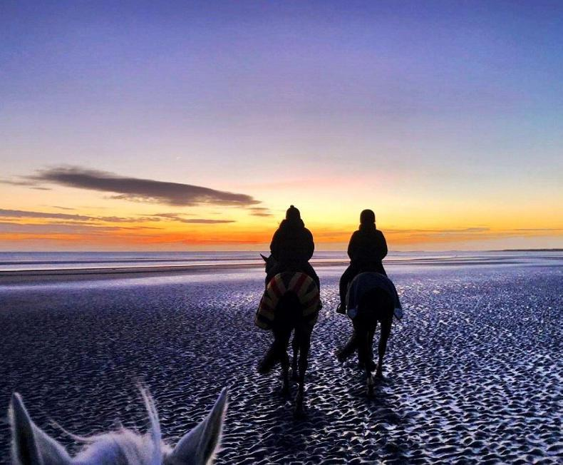 PONY TALES: Sunrise on Gormanstown Beach
