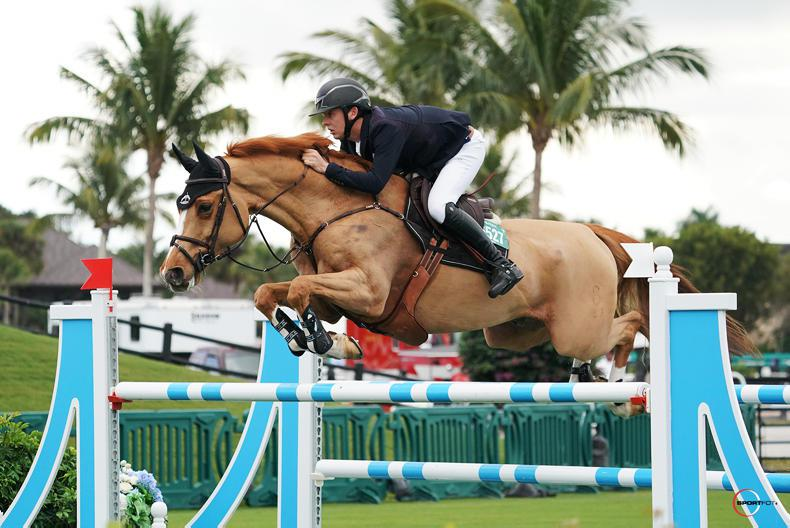 SHOW JUMPING: Allen off to a winning start in Florida