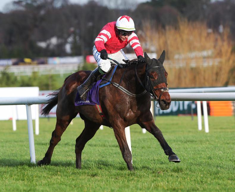 CHANELLE PHARMA NOVICE HURDLE: Mt Leinster can peak to extend Mullins record