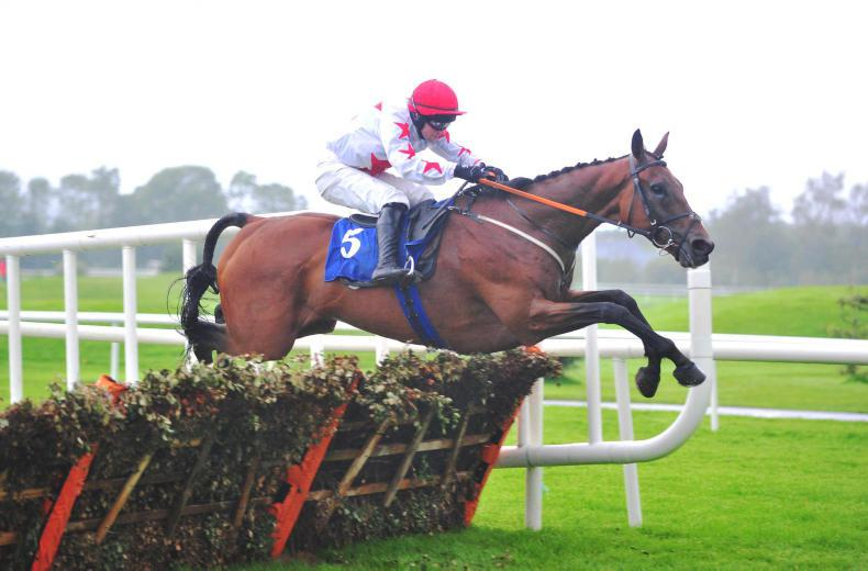 Darver Star fuels Champion Hurdle hopes