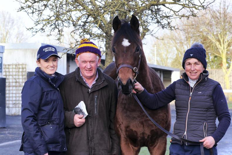SALES: First-crop Churchill colt leads opening session at Goffs