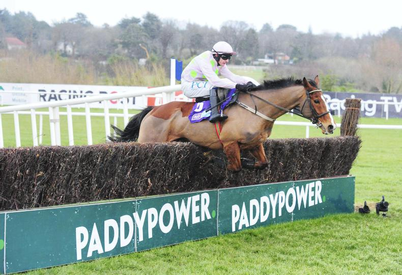LEOPARDSTOWN SUNDAY: Fabulous Faugheen very special