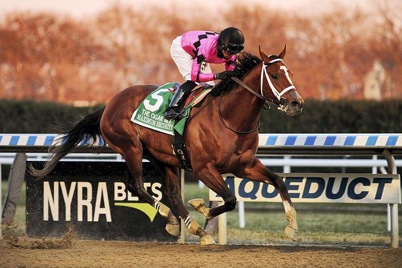 INTERNATIONAL RACING: Champion Maximum Security stands out in Saudi Cup