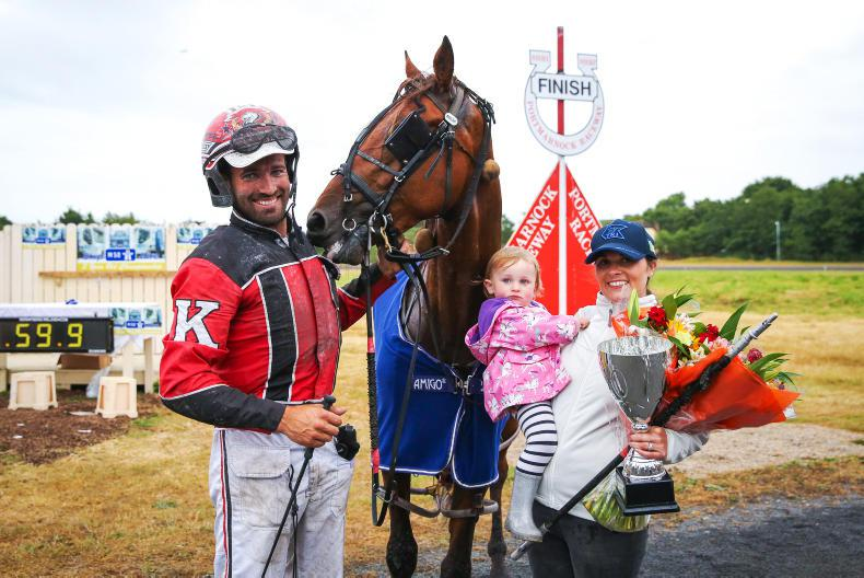 HARNESS RACING: Tradition of success set to continue with Kanes