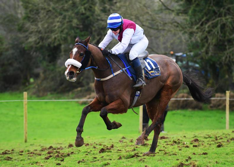 KNOCKMULLEN HOUSE: Husband and wife combine to win with Nephue