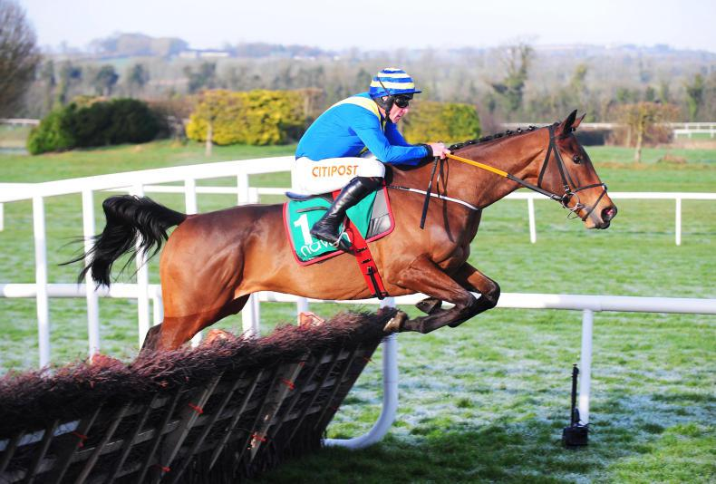 NEWS: New big-spending owner supporting Irish jump racing