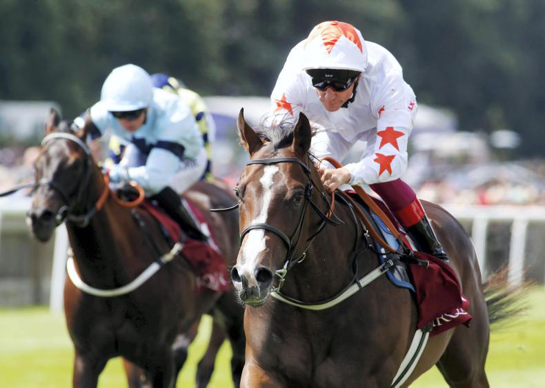 BLOODSTOCK: SIRE REVIEW: Advertise - Standing at National Stud