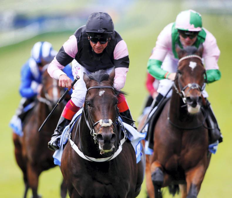 BLOODSTOCK: SIRE REVIEW: Aclaim - Standing at National Stud