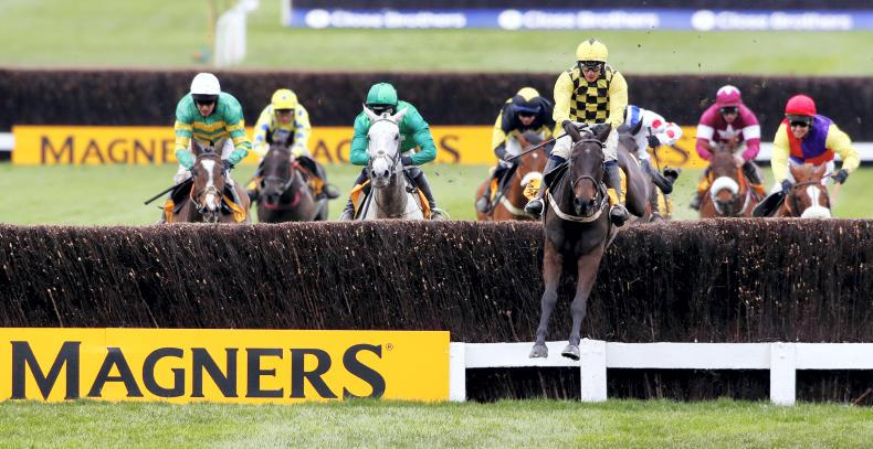 CHELTENHAM: Twenty go forward for Gold Cup