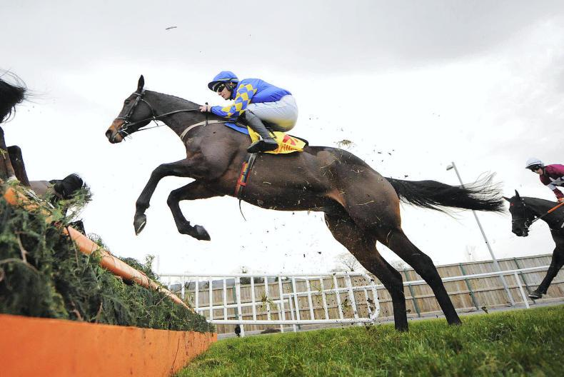 Is Kemboy the Irish-trained outsider to win the Cheltenham Gold Cup?
