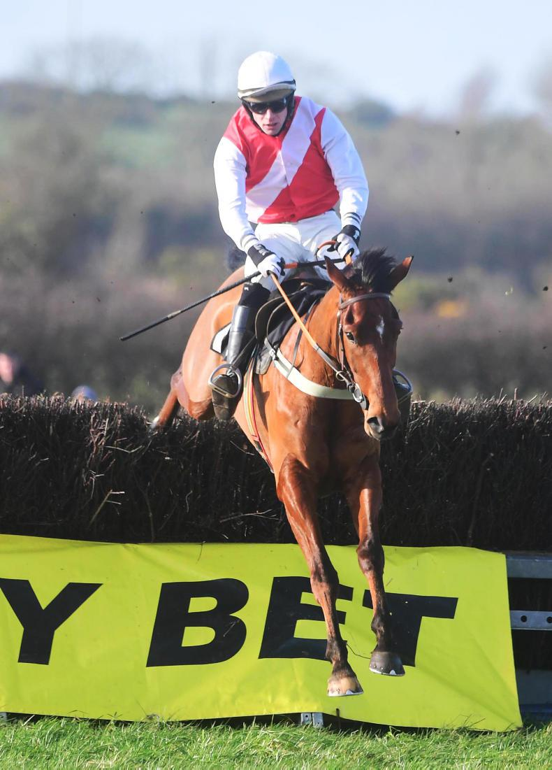 TATTERSALLS CHELTENHAM SALE: More demand for smart young jumpers