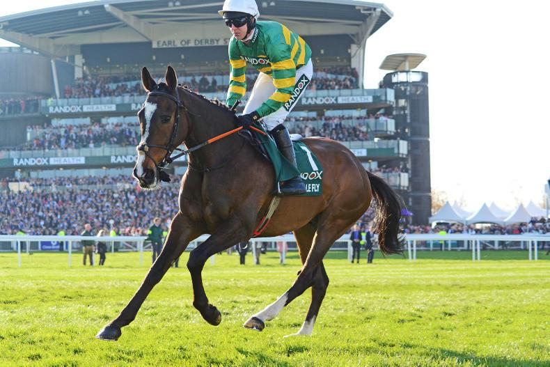 GRAND NATIONAL: All the Aintree weights revealed