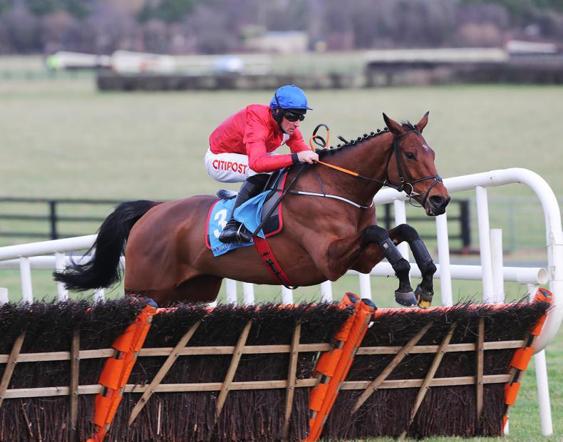 Five Irish-trained horses to watch at Cheltenham