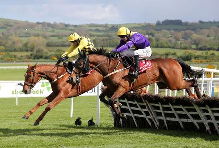 Mullins confirms Emery will be added to Champion Hurdle field