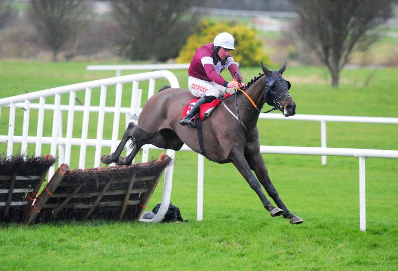 NAVAN SUNDAY: Smart wins and Tiger on a Roll