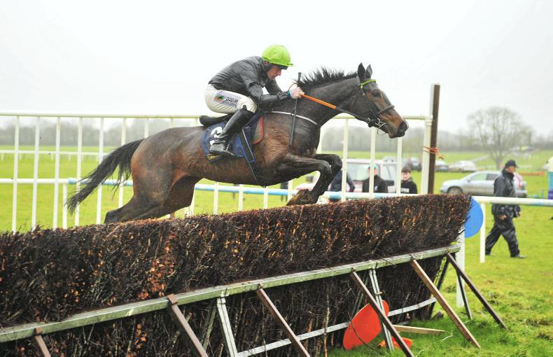 CRAGMORE SUNDAY: Smooth Brandy scores debut success