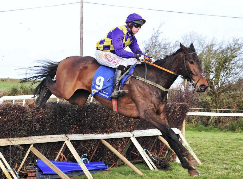KNOCKANARD SUNDAY: File Illico looks impressive