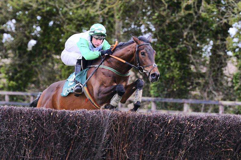 EOGHÁIN WARD: First season sires filling the void