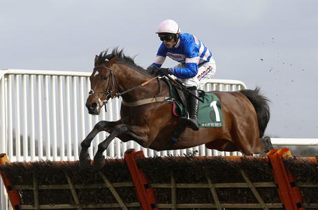 Adonis hero Solo stakes Triumph Hurdle claims