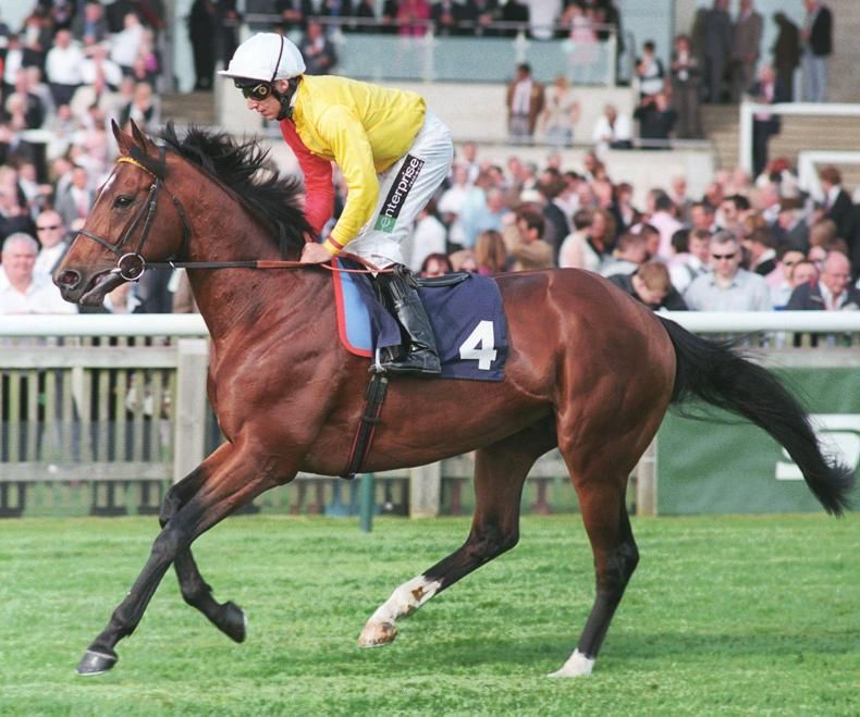 SIRE REVIEW: Palavicini - Standing at Irish National Stud