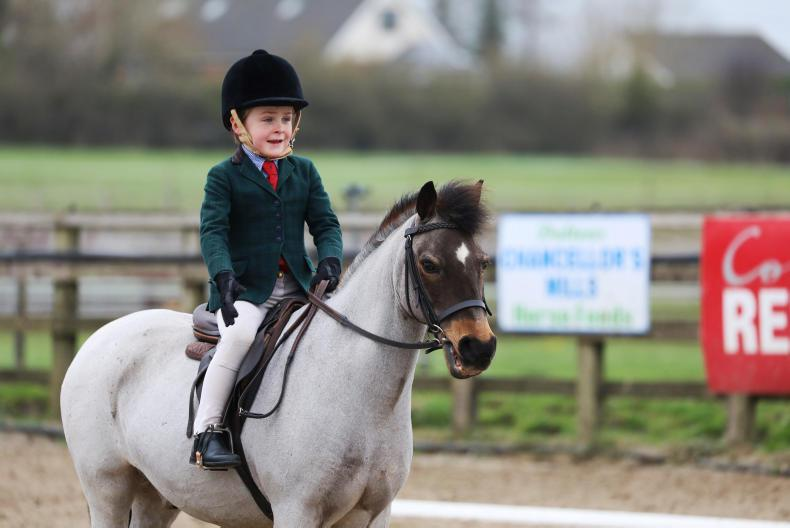 PONY TALES:  Top marks for Andy