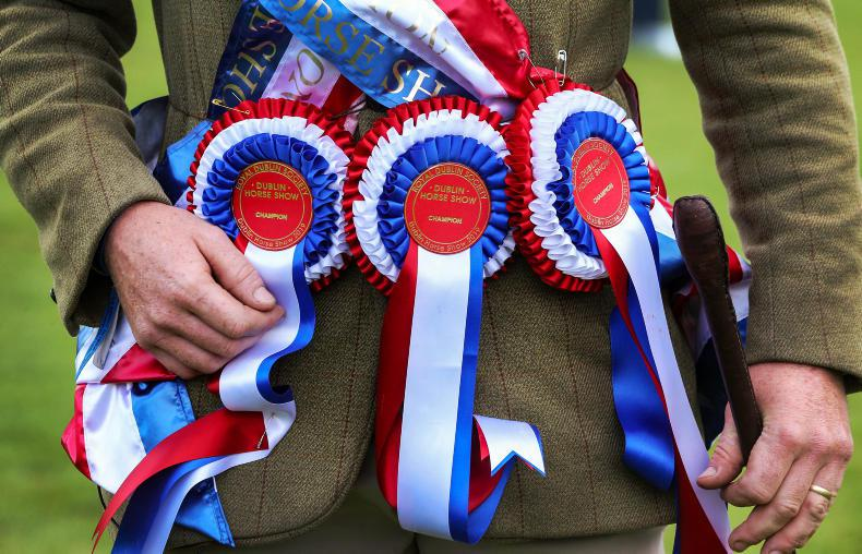 NEWS: RDS show hunter prize fund almost €50,000