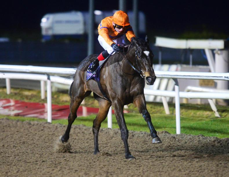 DUNDALK FRIDAY: Garland for O'Brien