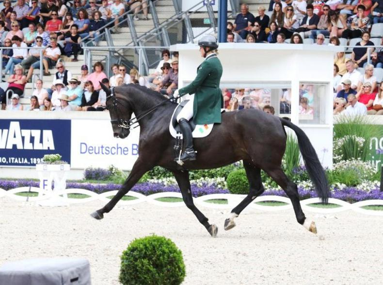 DRESSAGE:  Holstein sixth in Belgian Grand Prix