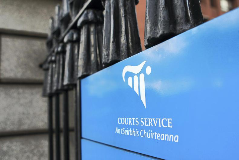 NEWS:  High Court told 'no conditions' attached to sale of horses
