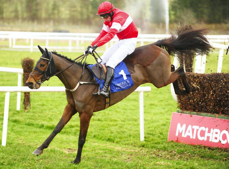 NAVAN PREVIEW: Mullins mare looks a Cut above in Flyingbolt