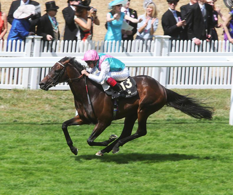 SIRE REVIEW: Time Test - Standing at The National Stud