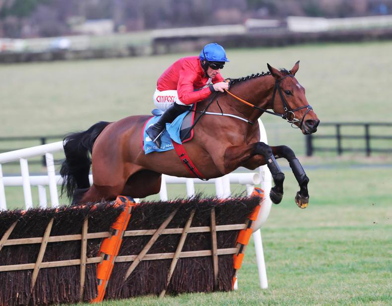 Elliott 'delighted' by Tiger Roll spin at Leopardstown