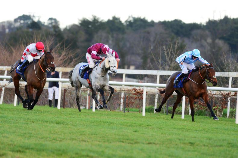 TALKING TRAINERS: Shooting stars for Cheltenham