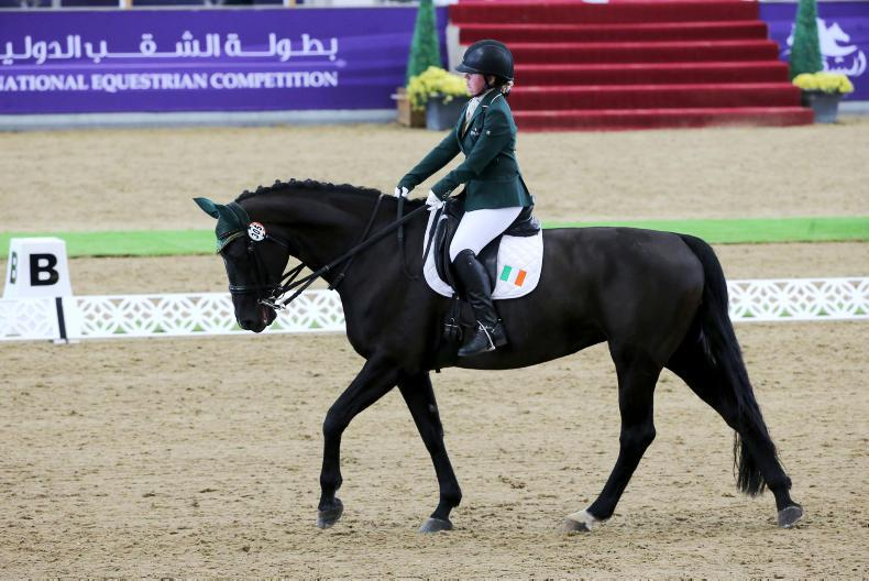 PONY TALES:  Kate is 'Aiming High'