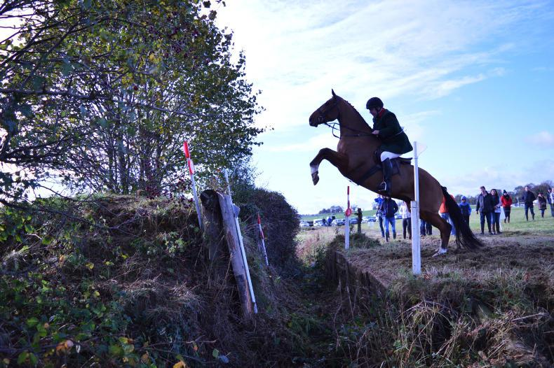AROUND THE COUNTRY:   Huge interest in Kildare Hunter Show