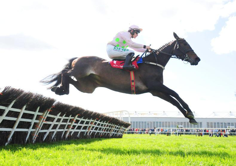 Honeysuckle and Benie Des Dieux on course for Mares' Hurdle showdown