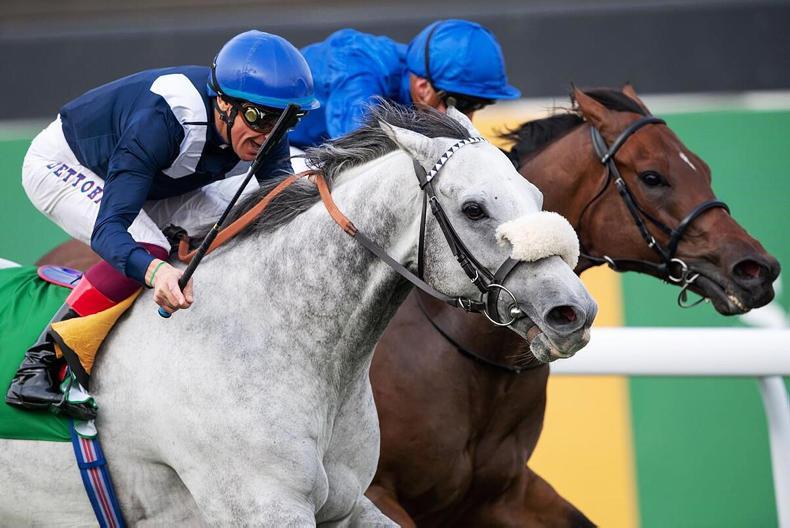 SAUDI ARABIA: History made as turf racing makes its debut