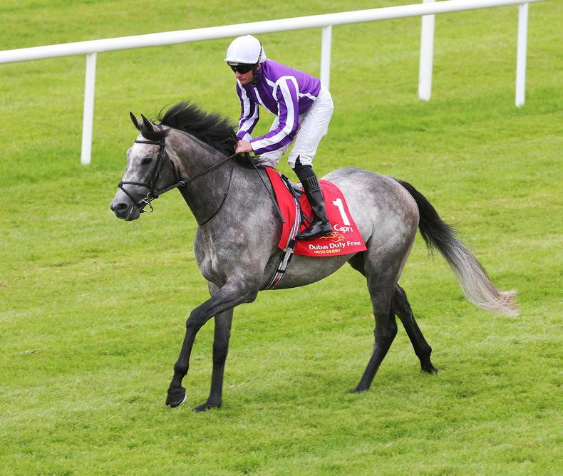 SIRE REVIEW: Capri - Standing at Grange Stud