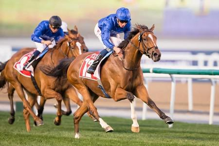 Barney Roy sets sights on Dubai Turf