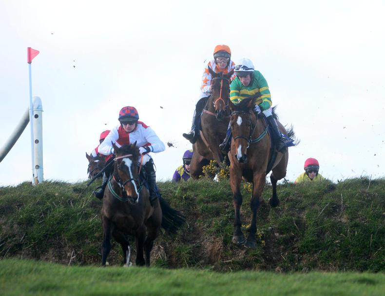 LINGSTOWN SUNDAY: Stand Up And Fight triumphs